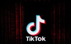 TikTok avoids US ban - for now