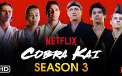 Cobra Kai, season 3 released