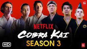 Cobra Kai, season 3 released